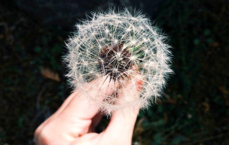 Imagem pessoal e autoimagem: conheça o papel desses conceitos na sua felicidade!